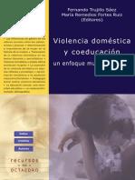 violencia domestica y coeducacion