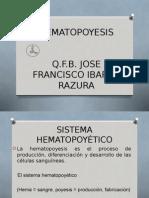 3)Sistema Hematopoyetico