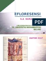 Efloresensi Dm