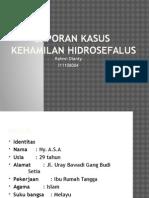KEHAMILAN HIDROSEFALUS