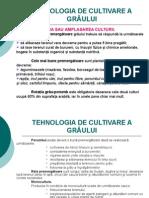 3b - Graul - Tehnologia de Cultivare