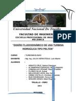 Informe Final Pelton