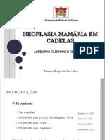 Neoplasia Ma Maria Emc Adelas