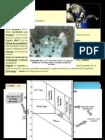 Cap. 7-8 - Mineralogia Descriptiva - Parte 2.pptx