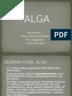 ppt ALGA kel 1