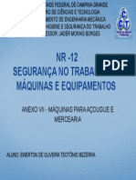 NR -12 (anexo VII)