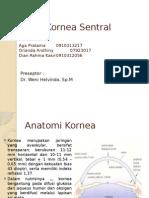 Case Ulkus Kornea