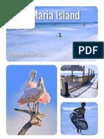 AMI Insider Travel Guide