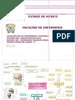 Antomofisiologia