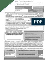ANEXO Formatos DGP