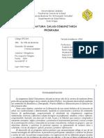 Programa Salud Comunitaria 3° año 2014