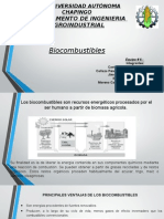 Pp Biocombustibles
