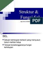 Strukter dan Fungsi Sel.ppt