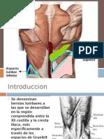 Hernias de La Pared Posterior Michael1