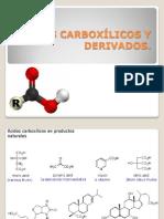 10. Acidos Carboxilicos y Derivados