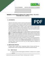 1.Resumen Ejecutivo-palo Seco