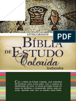 Biblia de Estudo Colorida_NVI