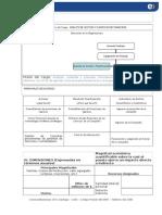 Perfil Analista Contable Docx