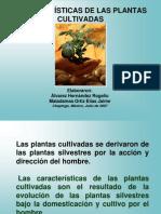 Caracterisiticas de Las Plantas Cultivadas