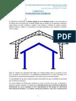 Diseño de Naves Industriales Lamina Delgada de Acero - Marcelo Romo