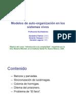 02 Modelos Auto-Organizacion 15 I