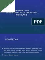 Diagnosis Dan Penatalaksanaan Dermatitis Numularis