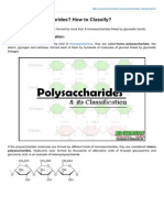 What Are Polysaccharides How to Classify