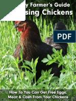 Lazy+Farmer+Guide+To+Raising+Chickens
