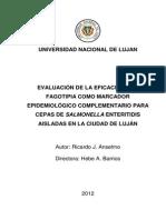 Evaluación de La Eficacia de La Fagotipia Como Marcador Epidemiológico Complementario Para Cepas de Salmonella Enteritidis