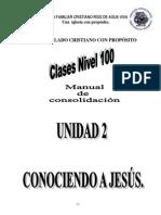02 Manual De consolidacion