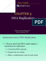 DNA Replication Igenetics Russell