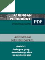 Perio-normal01 3 (Blm)