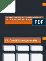 CARACTERISTICAS OPERACIONALES DE LA POSCOSECHA DE FLORES y postcosecha de las flores.pptx