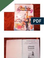 manual muzica clasa a V-a.pdf