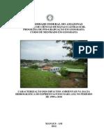 Caracterização Dos Impactos Ambientais Na Bacia Ericvan Mestrado
