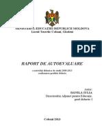 Raport de Autoevaluare Al Directorulu