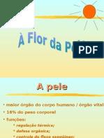 RH Cartilha Flor Da Pele
