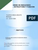 laboratoriodelascelulas-121025122739-phpapp01.pptx