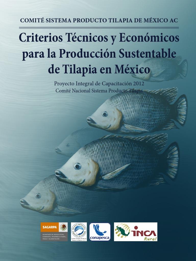 Criterios Tecnicos y Economicos Para La Produccion Sustentable de ...