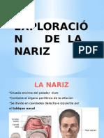PRESENTACIÓN DE NARIZ