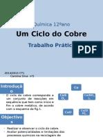 Carolina Silva - Ciclo de Cobre