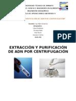 Extraccion de ADN Ope