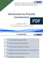 PEQUEÑO_CONTRIBUYENTE.pdf