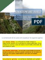 10. Contaminacion del suelo 2014.pdf