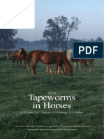 Tapeworms Horses