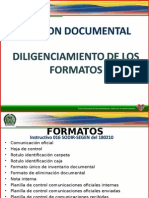 Produccion Documental y Estandarizacion de Formatos