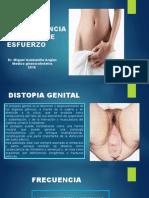DISTOPIAS GENITALES