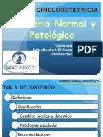 puerperiofabriannispolo-