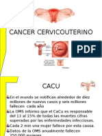Cancer Cervicouter 2014