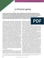Biodemography of human ageing